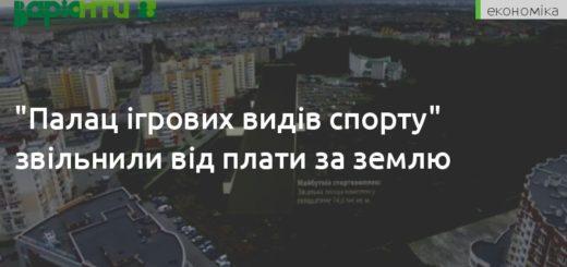 243573_palac_igrovih_vidiv_sportu_zvilnili_vid_p.jpeg