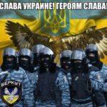 247533_proti_volontera_romana_sinicina_porushili.jpeg
