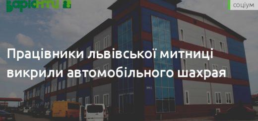 247749_pracivniki_lvivskoji_mitnici_vikrili_avto.jpeg