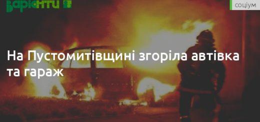 249521_na_pustomitivwini_zgorila_avtivka_ta_gara.jpeg