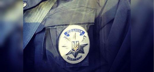 254323_vo_lvove_patrulnyj_vlez_cherez_fortochku_.jpeg