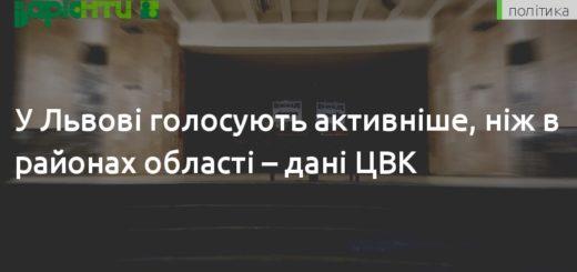 261845_u_lvovi_golosujut_aktivnishe_nizh_v_rajon.jpeg