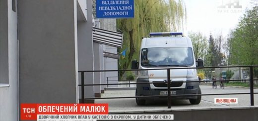 262934_na_lvivwini_dvorichnij_maljuk_upav_v_kast.jpeg