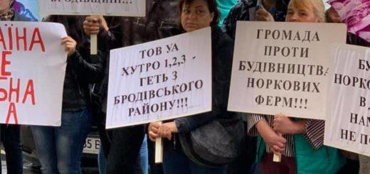 267020_lvivwina_bez_shkuroderen_aktivisti_organi.jpeg