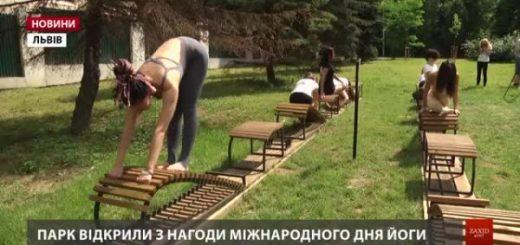 272271_u_lvivskomu_parku_vidkrili_pershij_v_ukra.jpeg